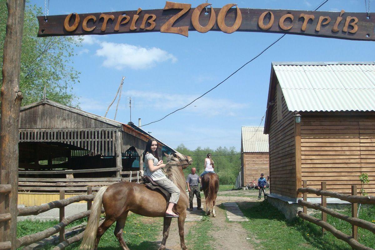 Zoo katanie